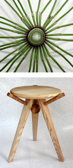 horsetail-stool